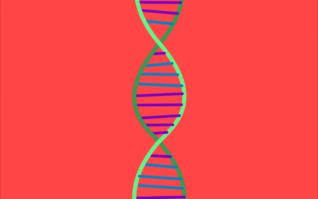7 Ways Your DNA Influences Your Ability to Lose Weight