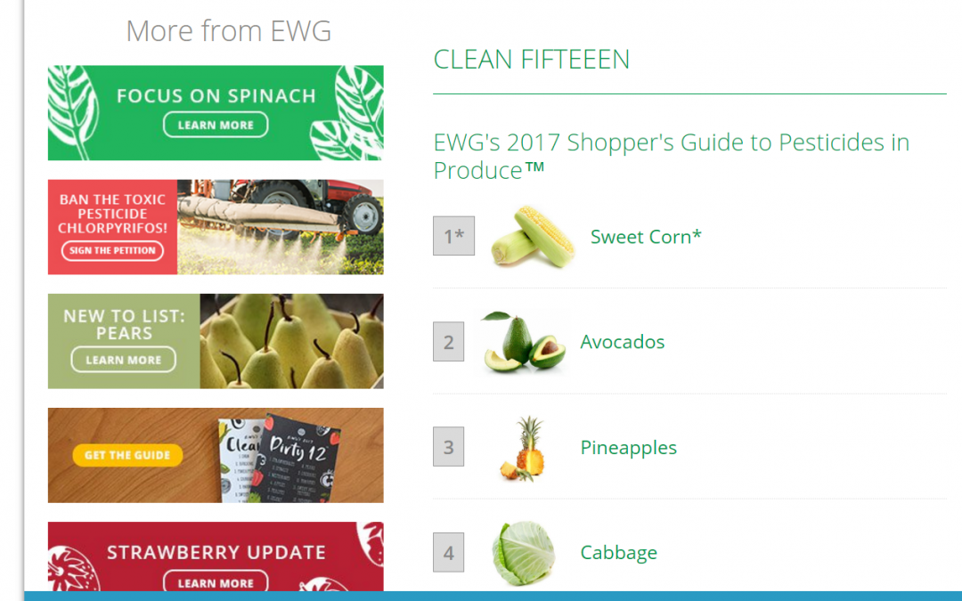 The Magic of EWG + Why You Should Detox